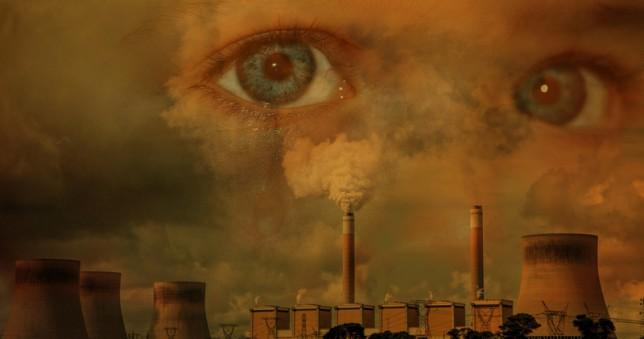 Artigo no JORNAL DA USP  discute mudanças ambientais e seus impactos na saúde humana