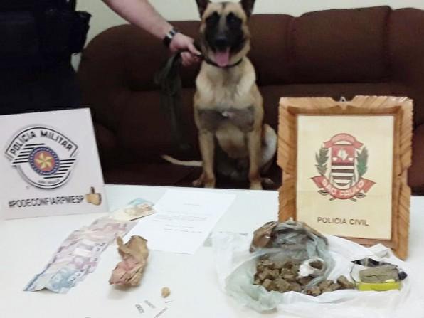 Polícia encontra droga enterrada e dupla foi presa por tráfico em Sarutaiá