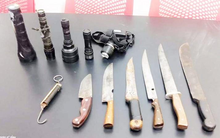 Polícia Florestal flagra caça de animal silvestre na região