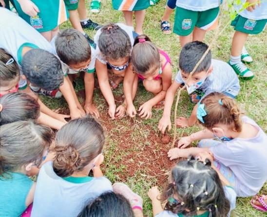 Dia da Árvore: Timburi realiza atividades com os alunos da rede municipal fundamental e infantil