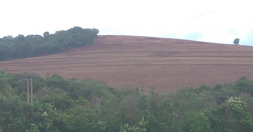 Polícia Ambiental lavra multa de 186 mil por degradação da flora no Pavão em Tejupá