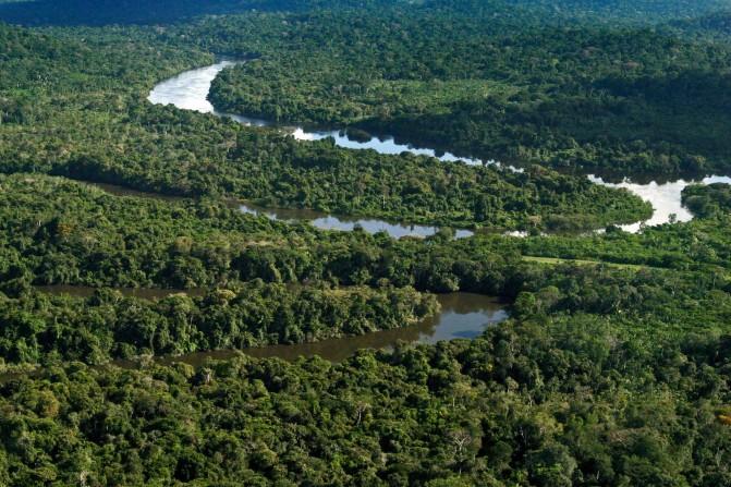 Proteger as florestas para salvar vidas